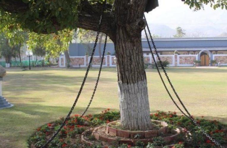 નશામાં ધૂત અંગ્રેજ અધિકારીએ વડના વૃક્ષને કર્યું કેદ,કારણ જાણીને આશ્ચ્ર્યચકિત થઇ જશો
