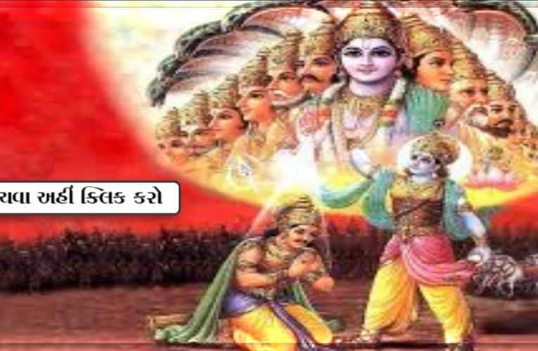 શુ તમને ખબર છે ?? શ્રી કૃષ્ણ મહાભારતમાં એક નહીં પણ બે હતા…